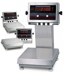 Bench Scales with Indicator